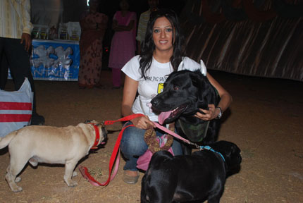 Dog Pets For Sale In Coimbatore