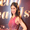 13th Indian Telly Awards Night